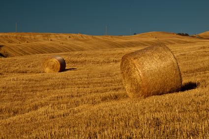 Podzim - farmářská půda v Itálii